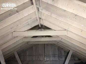 attic treated with anti mold coating - fungistatic coating