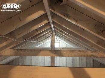 Mold remediation attic
