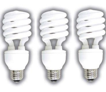 CFL_Light_bulb.jpg