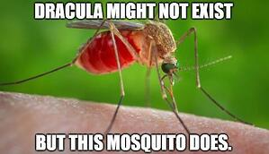 Dracula. Mosquito.Blood