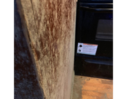 Humidity caused mold