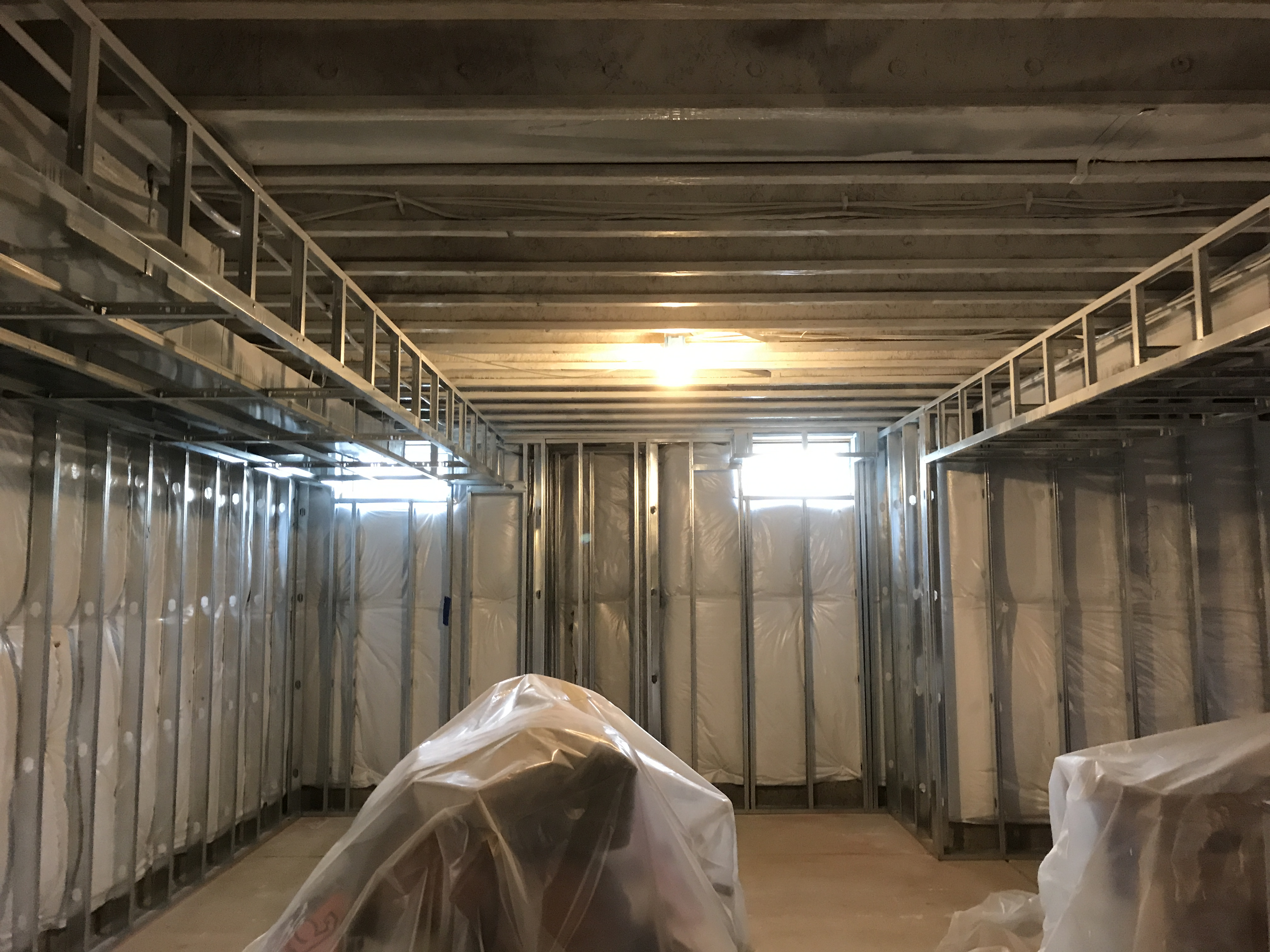 Fungicide application for mold remediation