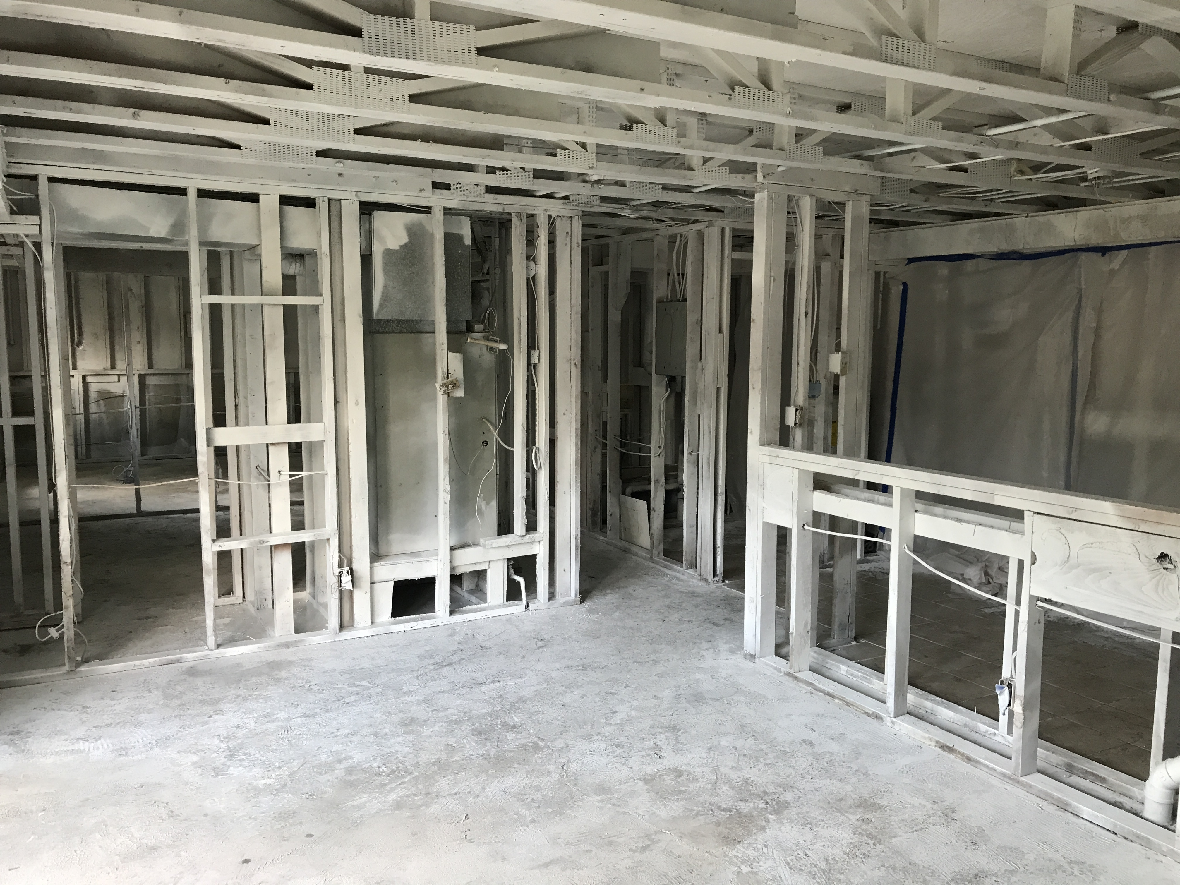 Mold resistant coating