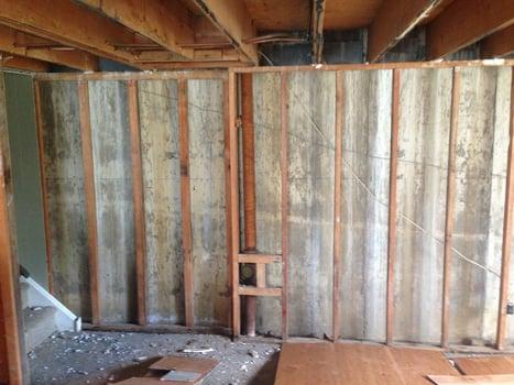 hidden mold behind basement wall