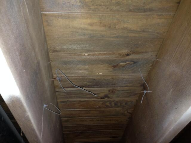 mold on rafters.jpg