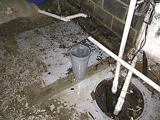 Mold Prevention1.jpg