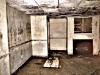 Mold_in_Basement3-424194-edited