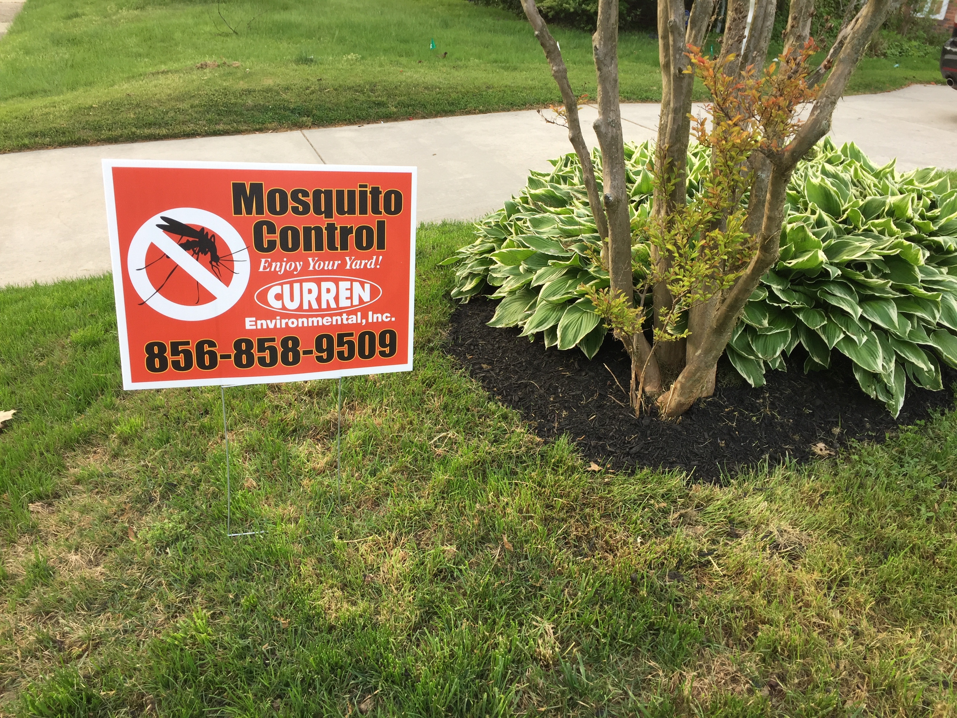 Mosquito Control-1.jpg