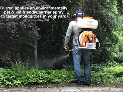 Mosquito control Targets Mosquitoes where they live