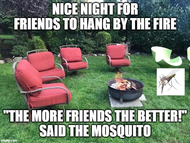 mosquito yard control