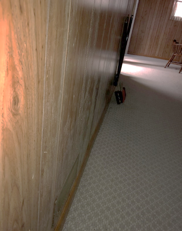 Mold growth on panneling walls