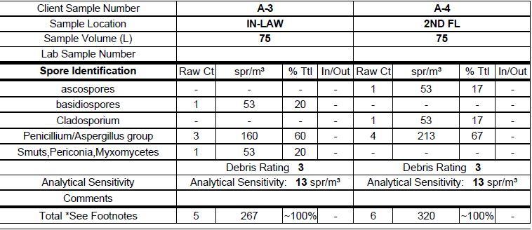 Post Mold Remediation Lab Data 2